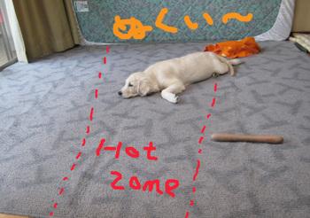11207