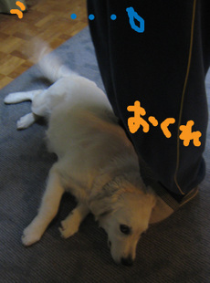 01215